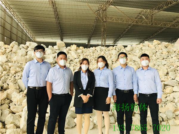 油漆PS光扩散剂供应厂家深圳海扬粉体