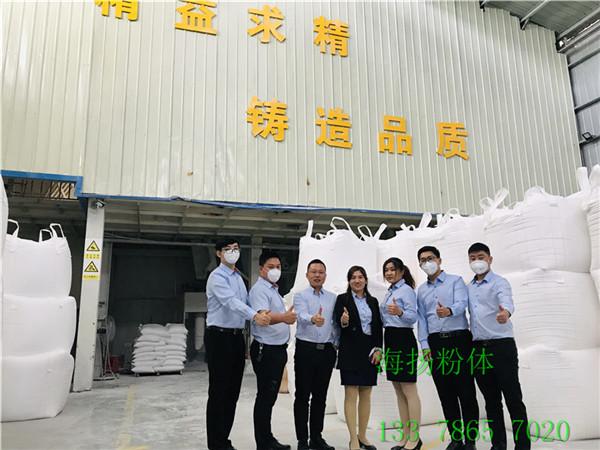 东莞PVC软灯条有机硅光扩散剂价格行情&nbsp海扬粉体